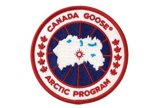 concurrent canada goose