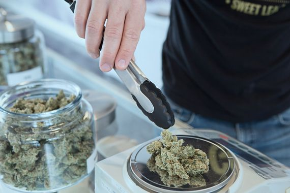 Quelqu'un pèse des cocottes de cannabis sur une balance.